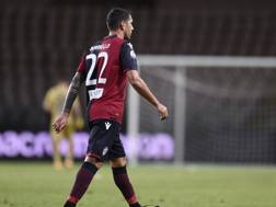 Marco Borriello, 35 anni, attaccante Spal. LaPresse