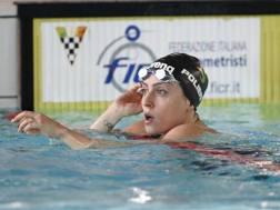 Alessia Polieri. Liverani