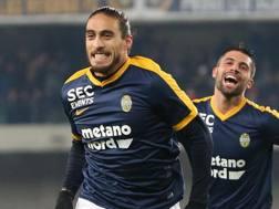 Martin Caceres, 30 anni, con la maglia dell'Hellas Verona. Ansa