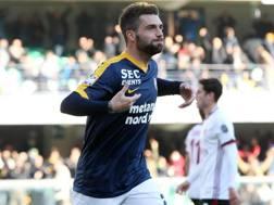 Daniel Bessa, 25 anni, centrocampista del Verona. LaPresse