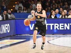 Andres Forray, 31 anni, 300 presenze con Trento