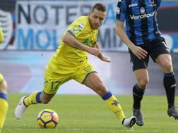 Emanuele Giaccherini, 32 anni, centrocampista del Chievo. GettyImage