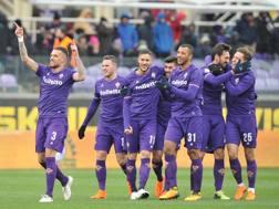 Festa viola dopo il gol di Biraghi. LaPresse
