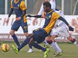 Mame Filly Sall mentre giocava per l'Hellas Verona Primavera. Lapresse