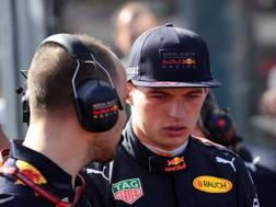 Max Verstappen, 20 anni, pilota della Red Bull. Lapresse