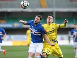 Un momento del match tra Chievo e Sampdoria. Ansa