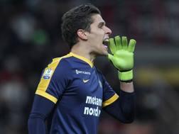 Marco Silvestri, 27 anni, è al Verona dalla scorsa estate. Getty