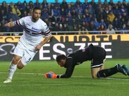Gianluca Caprari, 24 anni, festeggia l'1-0 sotto gli occhi di Berisha. Ansa