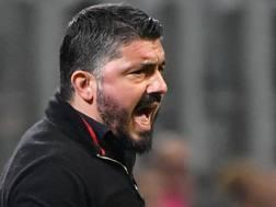 Gennaro Gattuso, 40 anni. ANSA