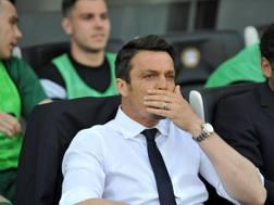 Massimo Oddo, 41 anni. Getty