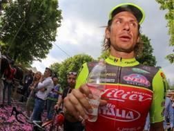 Filippo Pozzato, 36 anni. Bettini