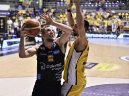 Toto Forray, 32 anni, capitano di Trento: la Dolomiti ha vinto le ultime 7 partite di campionato CIAM