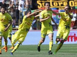 Inglese firma l'1-2: l'esultanza del Chievo. Ansa