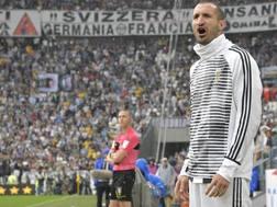 Il difensore della Juve e della Nazionale Giorgio Chiellini, 33 anni. Getty