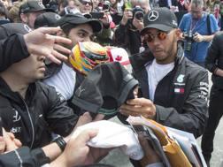 Lewis Hamilton firma autografi in Canada. Ap