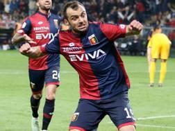 L'attaccante del Genoa Goran Pandev, 34 anni. LaPresse