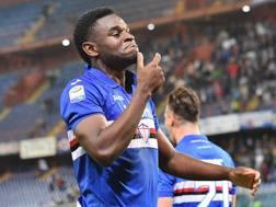 Il centravanti della Sampdoria Duvan Zapata, 27 anni. Ansa