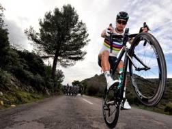 Peter Sagan, 28 anni. Bettini