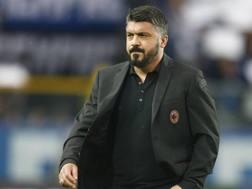 Rino Gattuso, 40 anni, tecnico del Milan. LaPresse