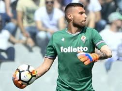 Marco Sportiello, nuovo portiere del Frosinone. Lapresse