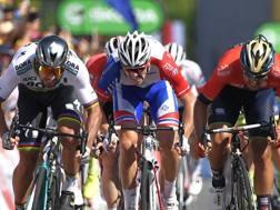 Peter Sagan vince in volata davanti a Colbrelli e Demare (Afp)