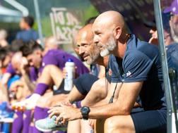 L'allenatore della Fiorentina, Stefano Pioli, 52 anni. LaPresse