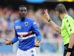 Pedro Obiang nel 2015 con la maglia della Sampdoria. LaPresse