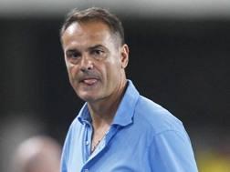 Vincenzo Vivarini, allenatore dell'Ascoli. Lapresse