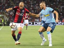 Rodrigo Palacio in azione contro la Spal. Ansa
