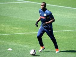 Usain Bolt al campo di allenamento di Gosford (Australia). Epa