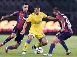 Un'azione di gioco tra Frosinone e Bologna. Ansa
