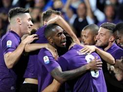 L'esultanza della Fiorentina al sesto gol di Simeone. Lapresse
