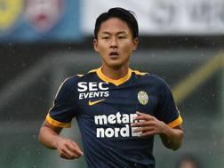 Lee Seung-woo, attaccante del Verona e della nazionale sudcoreana. Getty