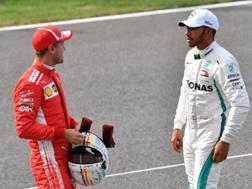 Sebastian Vettel, 31 anni, e Lewis Hamilton, 33, sono in lotta per il Mondiale piloti di F.1