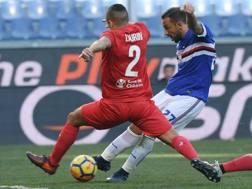 Samp-Fiorentina dello scorso gennaio. LaPresse