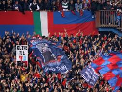 Tifosi del Catania LA PRESSE