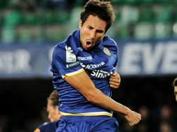 Il Verona festeggia il gol di Matos, per il momentaneo pari. Lapresse