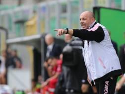 Bruno Tedino, ex allenatore del Palermo. LaPresse