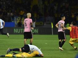 Il fischio finale di Frosinone-Palermo. Getty
