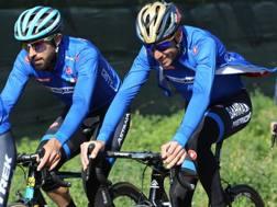 Gli azzurri impegnati in allenamento. Bettini