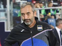 Marco Giampaolo, mister della Sampdoria. Getty