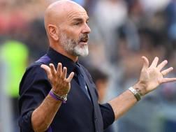 Stefano Pioli, tecnico della Fiorentina. LaPresse