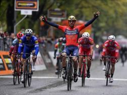 Lo sprint vincente di Sonny Colbrelli. Bettini