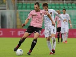 Una fase di gioco della sfida tra Palermo e Cosenza. LaPresse