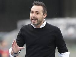 Roberto De Zerbi, 39 anni, allenatore del Sassuolo. Lapresse