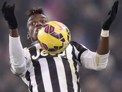 Paul Pogba, oggi 25enne, con la maglia della Juve: il francese è stato a Torino dal 2012 al 2016