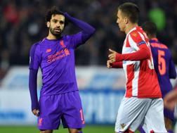 Mohamed Salah si dispera per la sconfitta del suo Liverpool a Belgrado. Getty