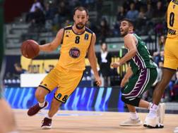 Peppe Poeta, 33 anni, play e capitano della Fiat LAPRESSE