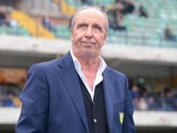 Gian Piero Ventura, ex allenatore del Chievo. ANSA