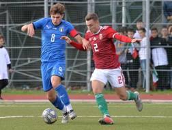 Manolo Portanova in azione contro l'Ungheria. Getty Images